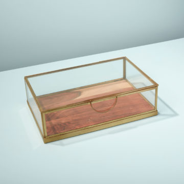 Glass Display Case with Wood Base, Medium